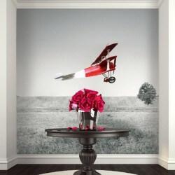 Mural decorativo avioneta