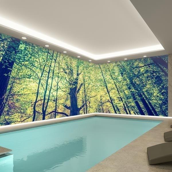 Photo murale forêt verte