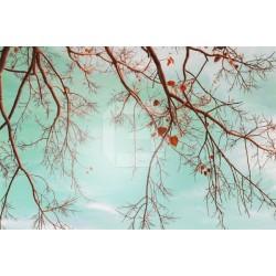 Fotomural colores vintage